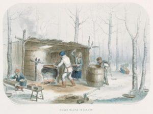 Cabane à sucre
